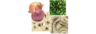 selezionatrici ottiche cipolle - onion sorting machine