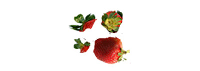 selezionatrici ottiche fragole difetti