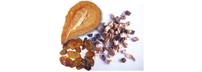 selezionatrici ottiche frutta disidratata difetti