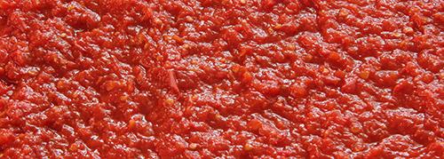 polpa selezionatrici pomodoro tomato sorting machine