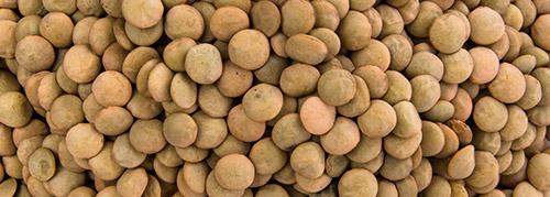 selezionatrici ottiche per Legumi lenticchie