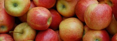 selezionatrici Ottiche Mele - apple sorting machine