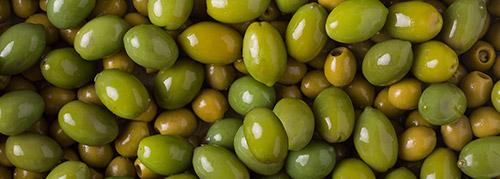 selezionatrici ottiche olive - olive sorting machine