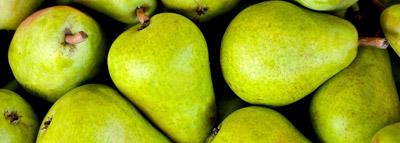 selezionatrici Ottiche pere - apple sorting machine
