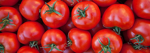 pomodoro tomato sorting machine
