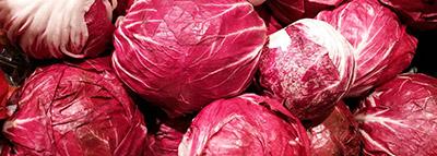 selezionatrici ottiche insalata radicchio rosso