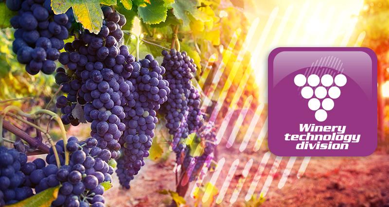 selezionatrici vinicoltura